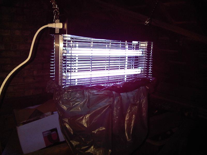 """UV uređaj za suzbijanje insekata """"Titan300"""" sa postavljenom vrećom za prikupljanje velikog broja ulovljenih insekata"""